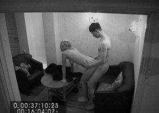 Salacious sofa intercourse